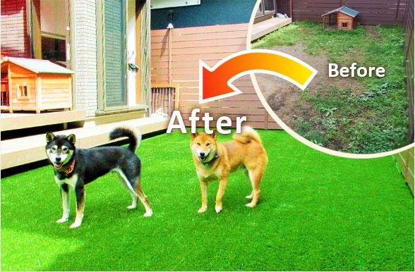 人工芝施工前後の比較2