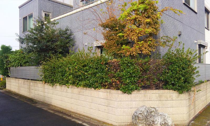 東京都 Y様邸の庭・施工前の写真