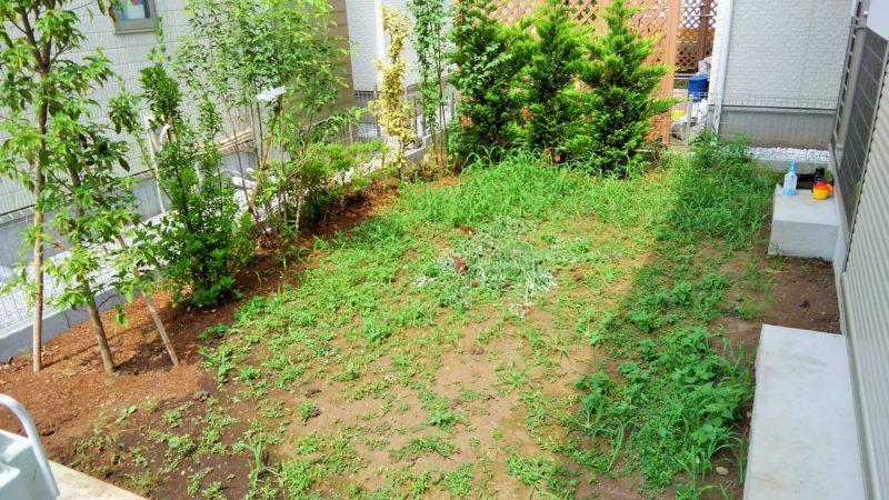 東京都 O様邸の庭・施工前の写真