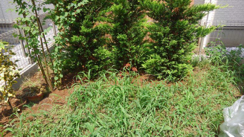 東京都 O様邸の庭施工前の写真1