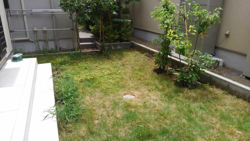 東京都 T様邸の庭・施工前の写真