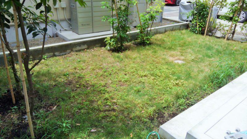 東京都 T様邸の庭施工前の写真1