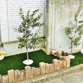 東京都 Y様邸の花壇のアイキャッチ画像