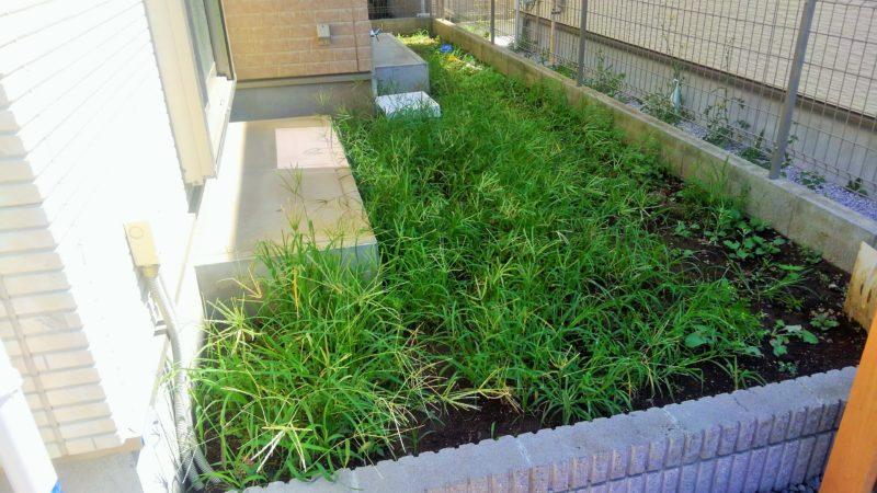 東京都 K様邸の庭・施工前の写真