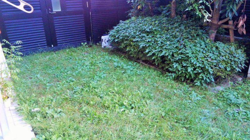 東京都 M様邸の庭・施工前の写真