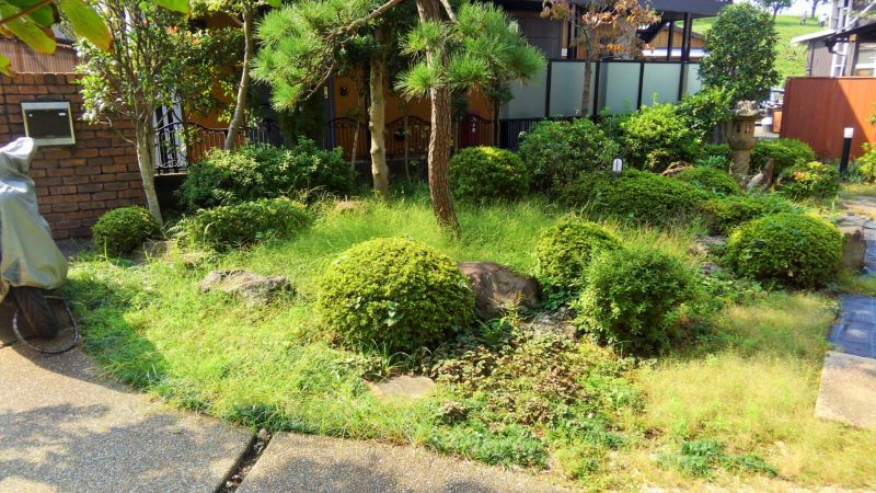 埼玉県 E様邸の庭・施工前の写真