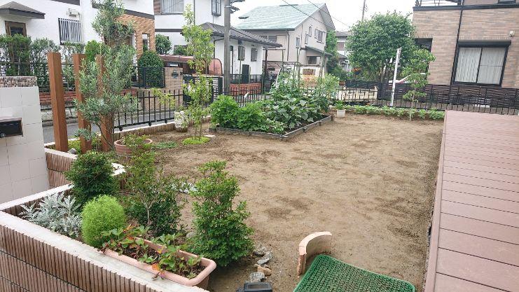 東京都S様邸の庭・施工前の写真